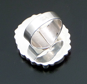 Emma Lincoln (Navajo) - Rectangular Multistone & Sterling Silver Cluster Ring #41325 Size 7 $420.00